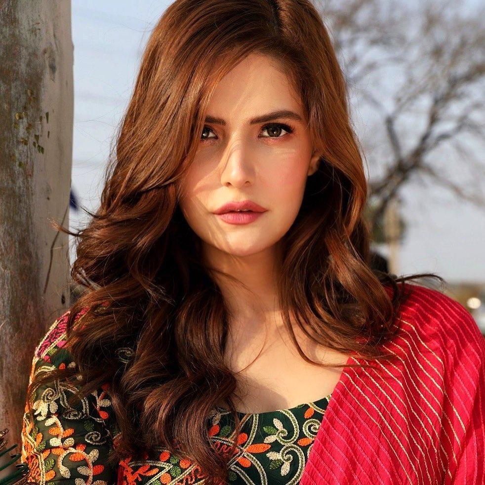 45+ Stunning Photos of Zareen Khan 2