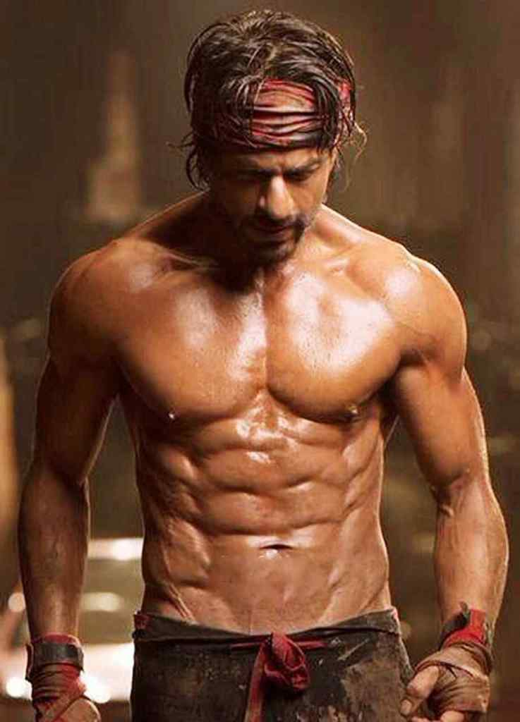 Shahrukh Khan Wiki, Age, Family, Movies, HD Photos, Biography, and More 93