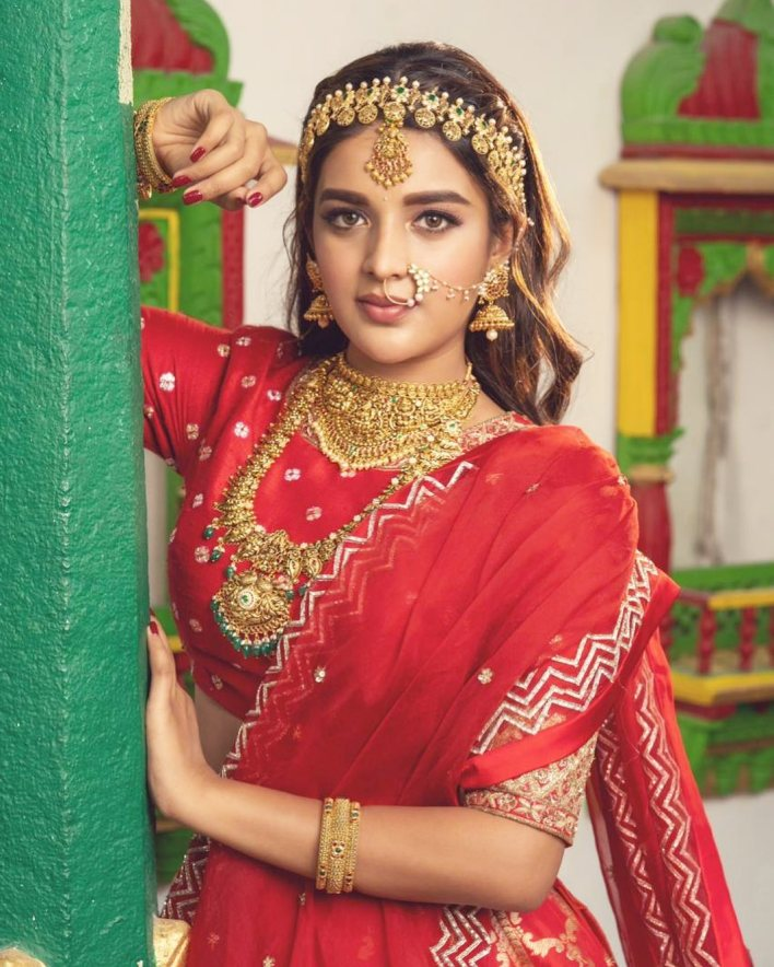 Nidhhi Agerwal Wiki, Age, Biography, Movies, and Beautiful Photos 5