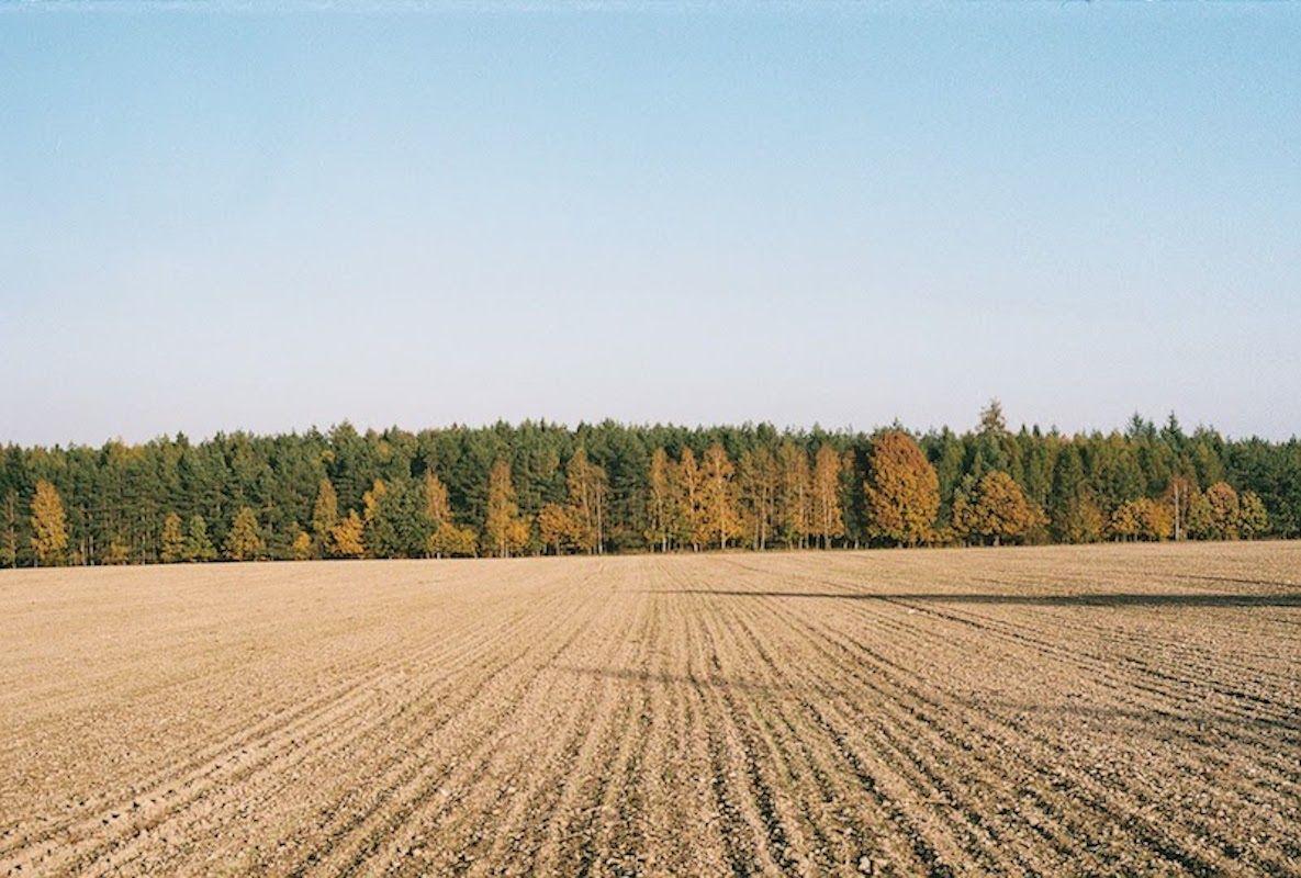 ultimos-dias-otoño-rymane