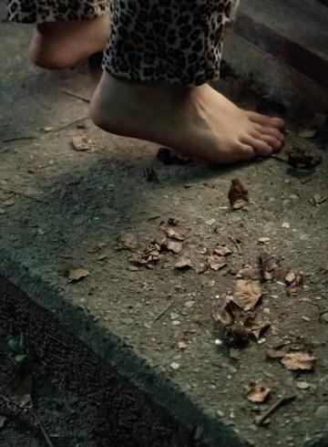 The Chestnut Man – Kastanjemanden Değerlendirmesi - FilmLoverss