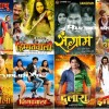 Bhojpuri movies list filmmakers fans