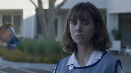 Horse Girl Netflix Film Recensie Filmmierenneukers