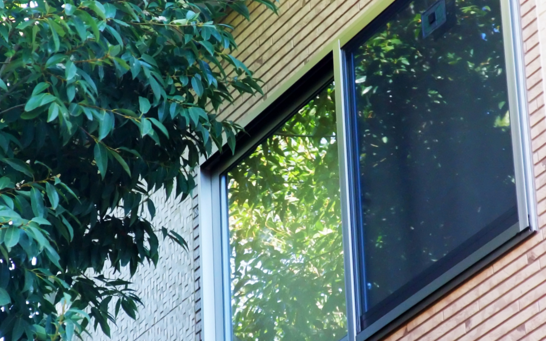 Everything You Need to Know About One-Way Window Films