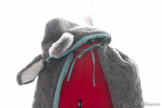 Peau d'âne - Filomenn