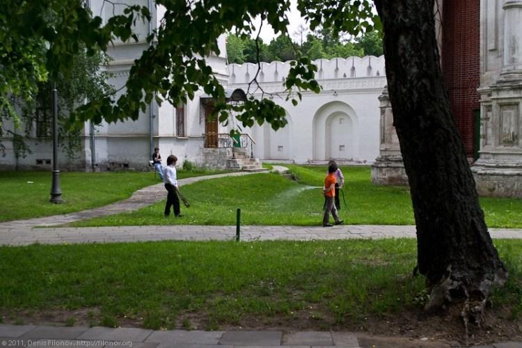 novdev-0016