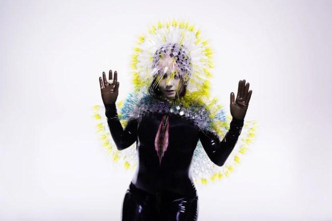 bjork-promo-misc_gallery_big_retina