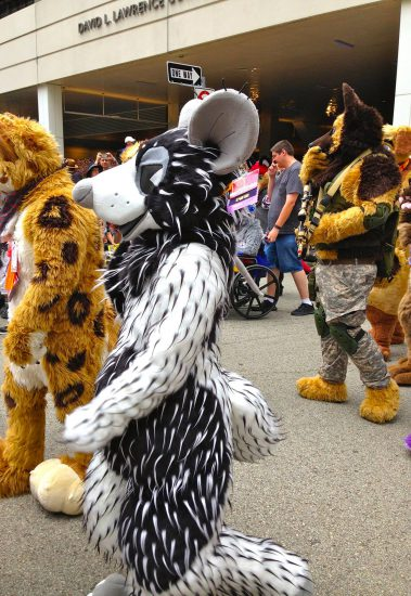 Here comes the Parade!…with a spiny rat