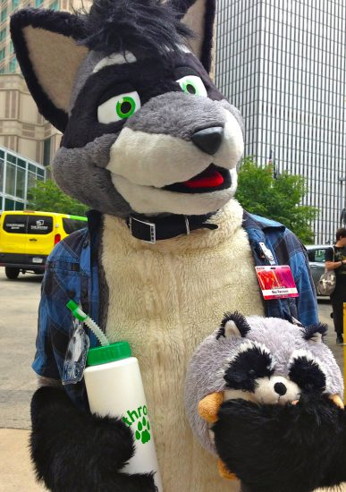 Raccoon with a little very round raccoon