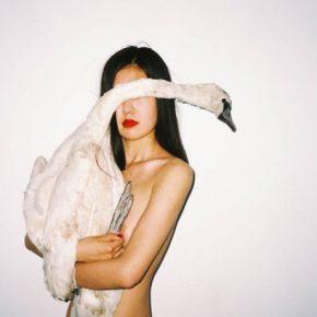 A Black Swan Song For Ren Hang