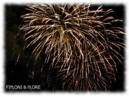 Feuerwerk Laternenfest - Halle (Saale)