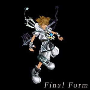 Kingdom_Hearts_2_Forma_Final