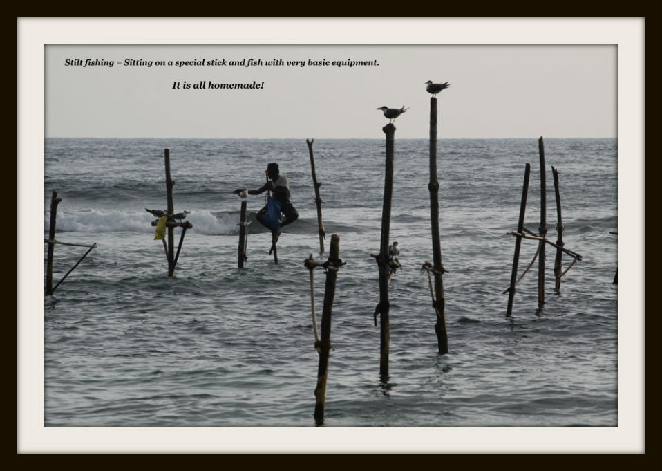 stilt-fishing-001