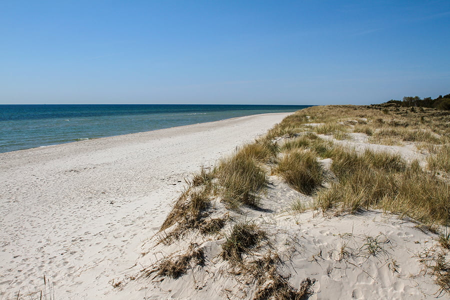 Sandhammaren, a great beach in Sweden