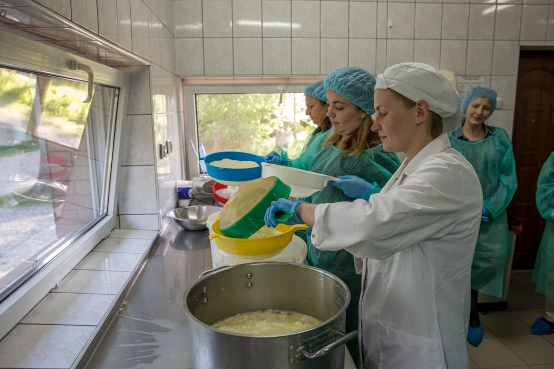 Making cheese in Poland