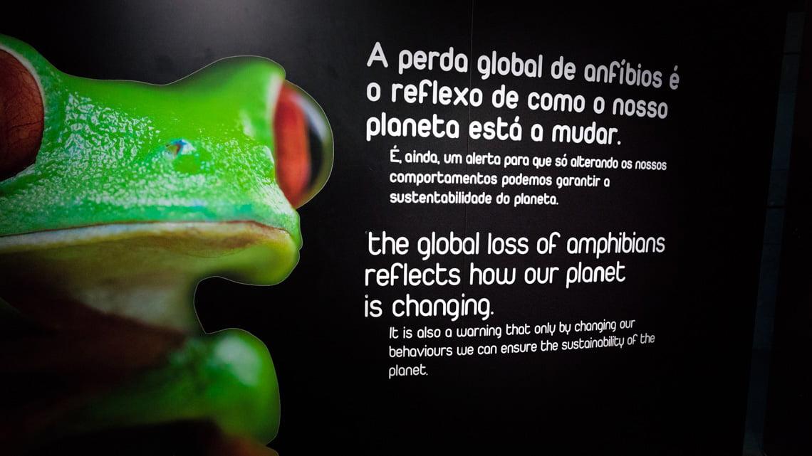 The Oceanarium in Lisbon is very informative