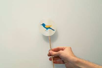 made-by-joel-bird-thaumatrope-4