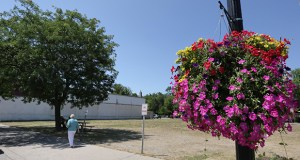 Excelsior was considering approving a lodging tax that could pay for city beautifications, such as the hanging basket seen in this July 2012 photo. But the city opted to postpone further discussion on the tax until construction starts on a hotel planned for the lot seen in the background. (File photo: Bill Klotz)