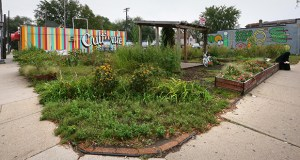 A community garden and a hair salon at the southeast corner of Lowry Avenue Northeast and Central Avenue Northeast are two properties the city of Minneapolis plans to buy, then resell for a proposed mixed-use housing development. (Staff photo: Bill Klotz)