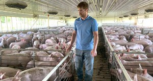 "Farmer Matthew Keller walks through one of his pig barns June 25 near Kenyon, Minnesota. Keller, who also grows crops to feed his livestock, said he ""definitely appreciated"" the $143,820 he collected from the Trump administration's farm aid program. It didn't cover all his losses but it helped with his cash flow, he said. (AP Photo: Jeff Baenen)"