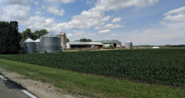 Woodbury is about 70 percent developed, and soon Minneapolis-based Maplewood Development Inc. is slated to turn this farm at 10350 Dale Road into part of one of the largest developments in the remaining area. (Submitted photo: Maplewood Development Inc.)