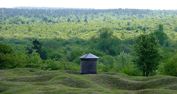 One of the most brutal battles of World War I was fought in Verdun, France. That trench warfare site is now 25,000 acres of regenerated forest that attracts more than a quarter-million visitors annually. (Submitted photo: creative commons BY-SA)