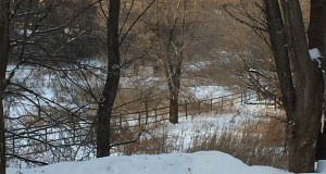 Rick Vogelgesang, owner of West Bay Homes, plans to develop 17 homes on this snowy landscape, the 10.77-acre site of the former Cedarcrest Stables at 16870 Cedarcrest Drive. (Submitted photo)