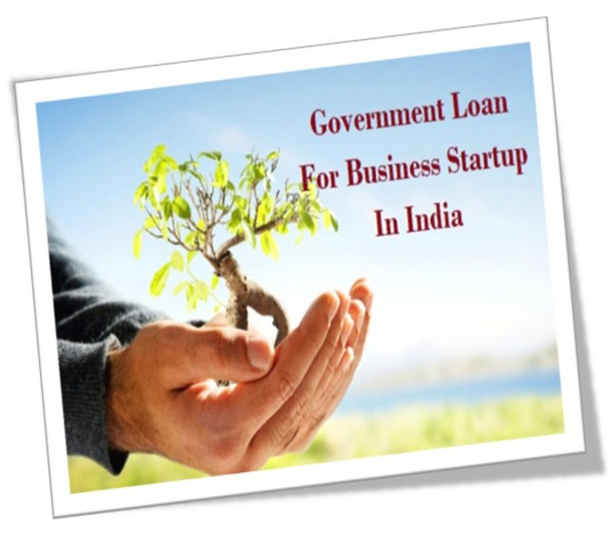 Top Government Loans for your Business