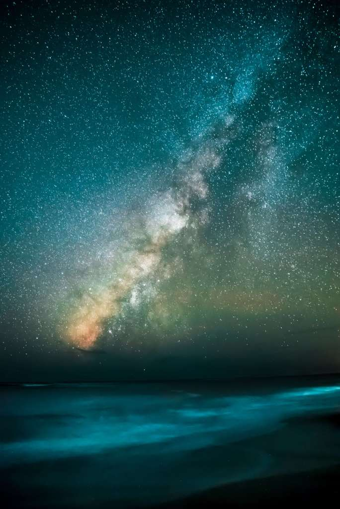 Financial Glass - Star filled night sky over the ocean