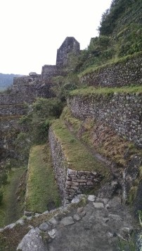 Steep terraces in the side of Huayna Picchu.