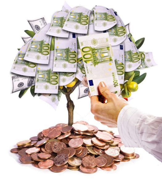 Money tree - Financially free