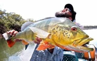 Jay Johnson Fly Fishing