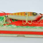 Young Wounded Minnow Bottom