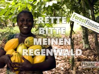 Regenwald kaufen