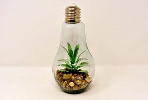 Cómo hacer que tu casa sea más sostenible en españa