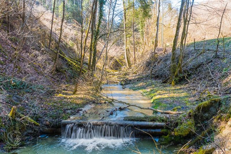 Der Buttenmühlebach an der Buttenmühle - Bannwald