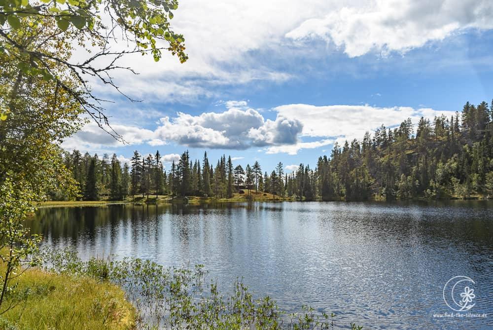Ein kleiner See im Nadelwald - und man trifft tagelang keinen Menschen!
