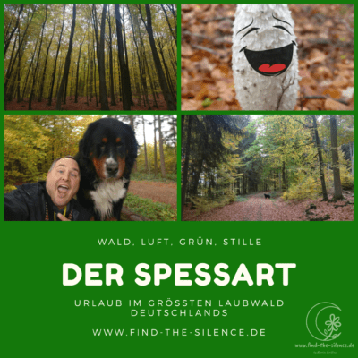 Wald, Luft, Grün, Stille - Spessart