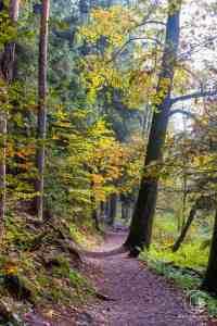 Wanderung durch die Schwarzachklamm im Nürnberger Land