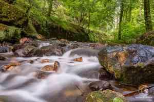 Flussläufe bieten viele Fotomotive