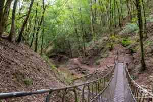 einsamer Wanderweg durch ein Bachtal