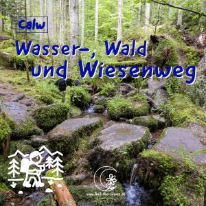 Wasser-Wald-und-Wiesenpfad Calw