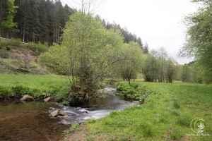 Täler mit Flüssen