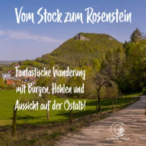 Vom Stock zum Rosenstein