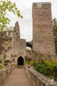 Bergfried Ruine Zavelstein