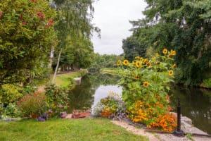 Blütenpracht am Kanal