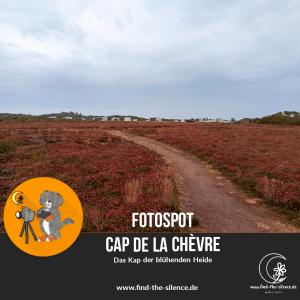 Fotospot Cap de la Chèvre - das Kap der blühenden Heide