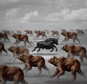 Stock market positive forecast financial concept and contrarian individual financial symbol as a courageous bull running in the opposite direction of a group of bears as an investing trend symbol.