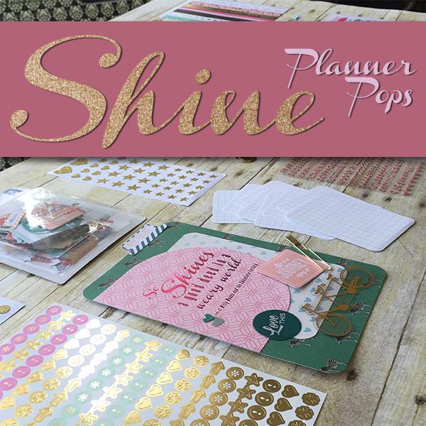 Shine Planner Pops Product