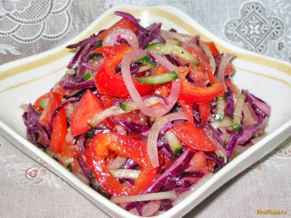Салат Из Красной Капусты Рецепты С Фото На Зиму